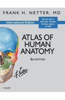 Netter Atlas Of Human Anatomy